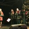 Darbietungen weihnachtlicher Musik 2016_7